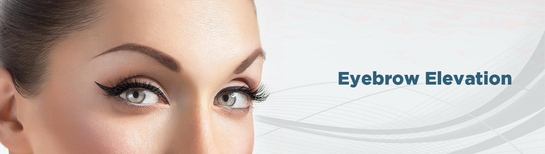 02. Eyebrow Elevation